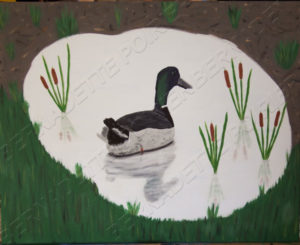 Painting of Mallard Duck in Pond. An adaptation from an original photo of duck in puddle in field.